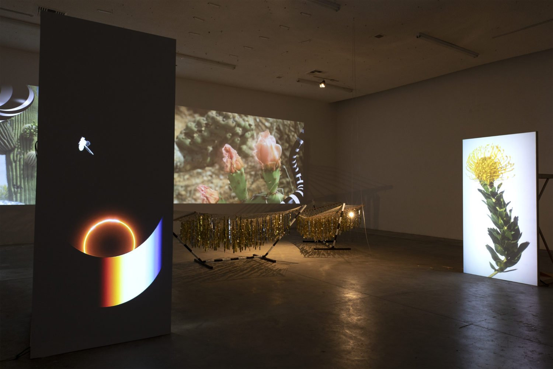 Installation view, Alias, 2018 Human Resources Los Angeles